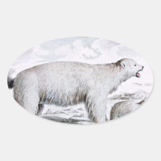 Polar Bears Old Illustration Oval Sticker