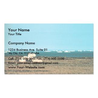 Polar Bears on Barter Island Business Card Templates