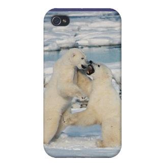 Polar Bears Play fight iPhone 4 Cases