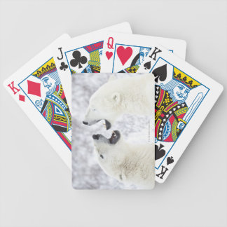 Polar Bears playing in the snow Bicycle Playing Cards