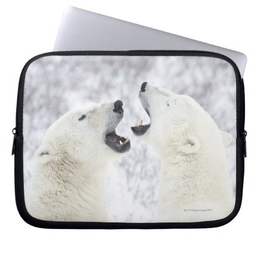 Polar Bears playing in the snow Laptop Sleeves