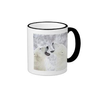 Polar Bears playing in the snow Ringer Coffee Mug