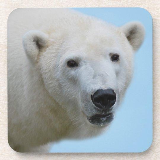 Polar bears profile beverage coaster