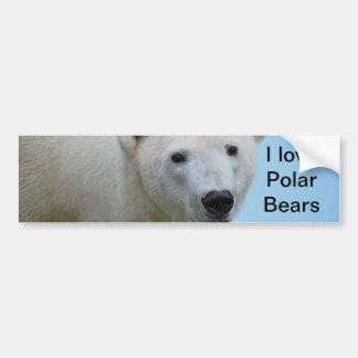 Polar bears profile car bumper sticker
