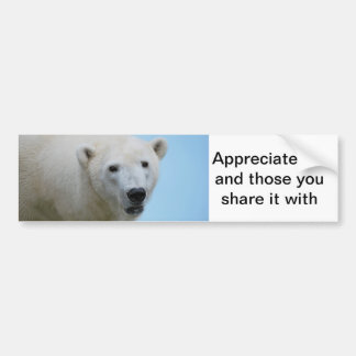 Polar bears profile bumper sticker