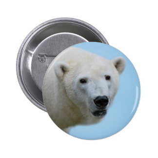 Polar bears profile buttons