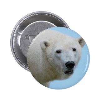 Polar bears profile button
