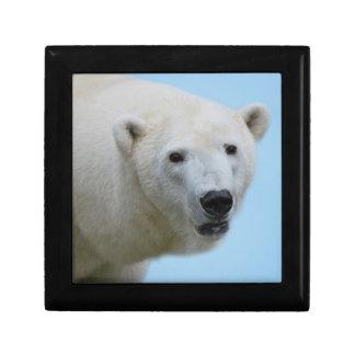 Polar bears profile jewelry box