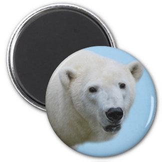 Polar bears profile magnet