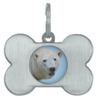 Polar bears profile pet tag