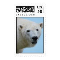Polar bears profile postage