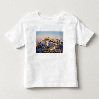 Polar bears scavenging on a bowhead whale t shirt