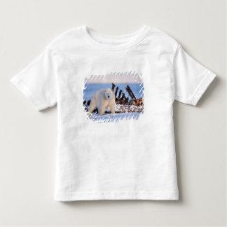 Polar bears scavenging on baleen whale bones, t-shirt