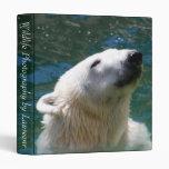 Polar bears smile 3 ring binders
