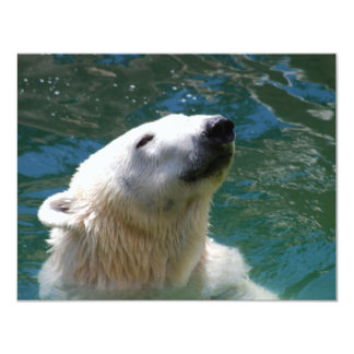 Polar bears smile card