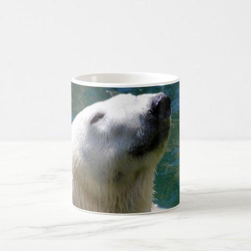 Polar bears smile mug