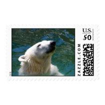 Polar bears smile postage
