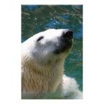 Polar bears smile stationery paper