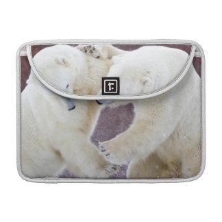 Polar Bears sparring 2 MacBook Pro Sleeves