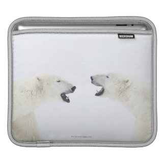 Polar Bears standing on snow after playing Sleeve For iPads
