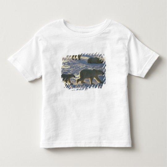 Polar bears Ursus maritimus) Two females, Toddler T-shirt