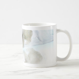 Polar bears walk to freedom mugs