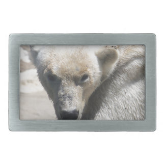 Polar Beer Rectangular Belt Buckle
