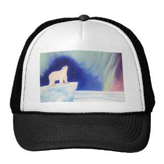 Polar Lights Mesh Hat