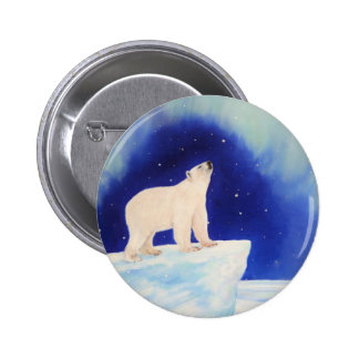 Polar Lights Pinback Button