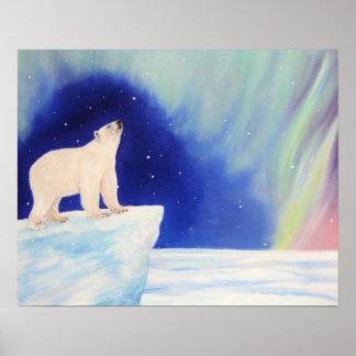 Polar Lights Poster