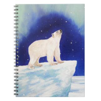 Polar Lights Spiral Notebooks