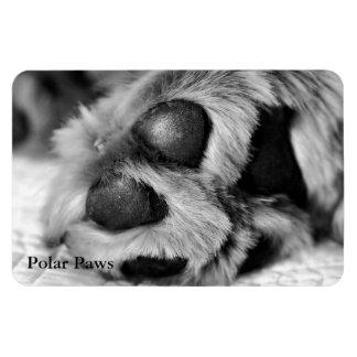 Polar Paws, Golden Retriever Magnet