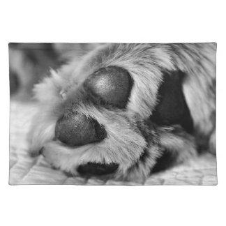 Polar Paws Cloth Placemat