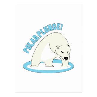 Polar Plunge! Post Cards