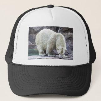 Polar Power Trucker Hat