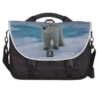 Polar refiera el hielo de paquete bolsas para portátil