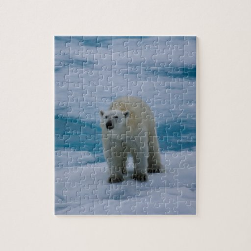 Polar refiera el hielo de paquete puzzles con fotos