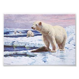 Polar refiere arte de las masas de hielo flotante fotos