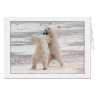 Polar Spat Card