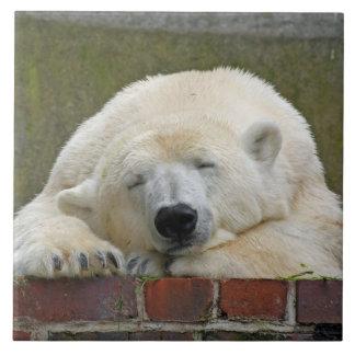 PolarBear20150501 Tile