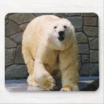 Polarbear Alfombrilla De Raton