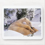 polarbear-baby mouse pads