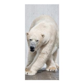 Polarbear walking custom rack card