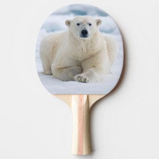Polares adultos refieren el hielo de paquete del pala de tenis de mesa