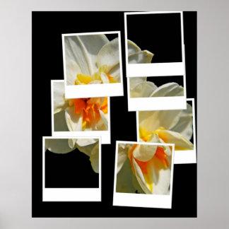 Polaroid Snaps Poster