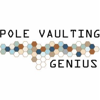Pole Vaulting Genius Photo Cutouts