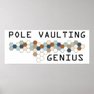 Pole Vaulting Genius Posters