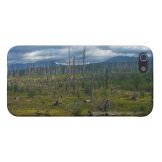 Polebridge Area Burnout Glacier National Park Case For iPhone SE/5/5s