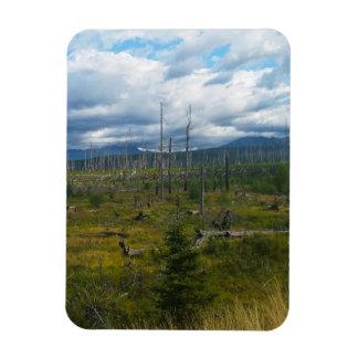 Polebridge Area Burnout Glacier National Park Magnet