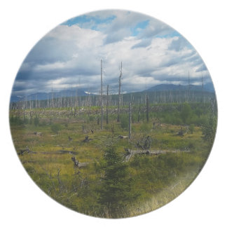 Polebridge Area Burnout Glacier National Park Melamine Plate